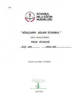Kitapçık Kapağı